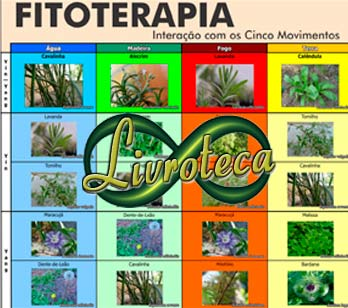 Curso de Fioterapia - Via Internet